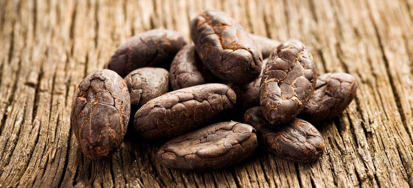 Kakaobohnen sind gesund