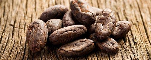 Kauf von Kakaonibs lohnt sich